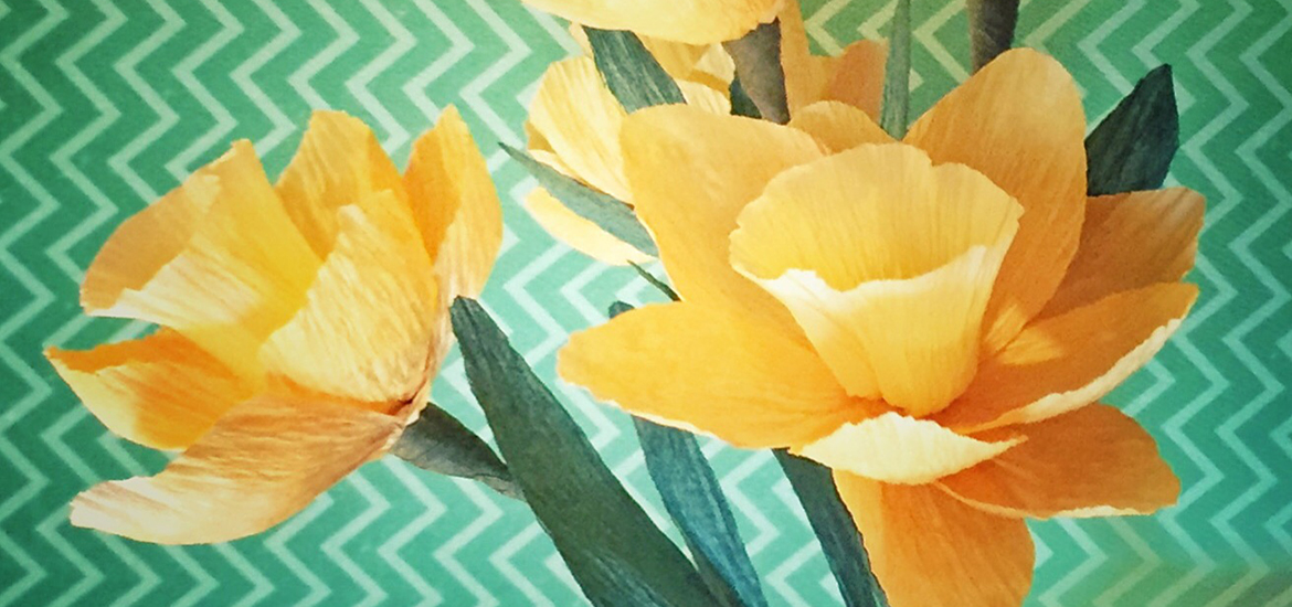paper_daffodil_featured_image